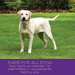 Wellness WellBites Soft Natural Dog Treats, Turkey & Duck, 8-Ounce Bag
