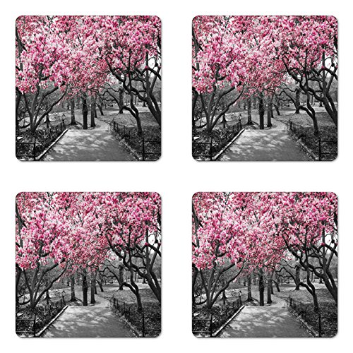 Blossom 4 Bar - Lunarable NYC Coaster Set of 4, Blossoms in Central Park Landscape with Cherry Trees Forest in Spring Season Picture, Square Hardboard Gloss Coasters, Standard Size, Magenta Grey
