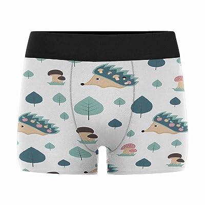 InterestPrint Boxer Briefs Men's Underwear Cute Hedgehogs and Mushrooms (XS-3XL)