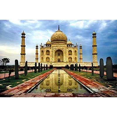 Shotbow Jigsaw Puzzle 1000 Pieces for Adult, Taj Mahal Jigsaw Puzzle Classic Art Puzzle Difficult Adults Puzzles Family Entertainment Educational Puzzles (Multicolor): Toys & Games