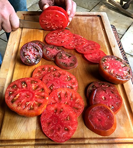 Heirloom Trellis (HEIRLOOM TOMATO SEEDS - Non-GMO Organically Grown Superior Performers, Top Flavor, 4 PACK: NEW Releases - Red Sunset, Dino Egg, Pink Sunrise, & Brick)