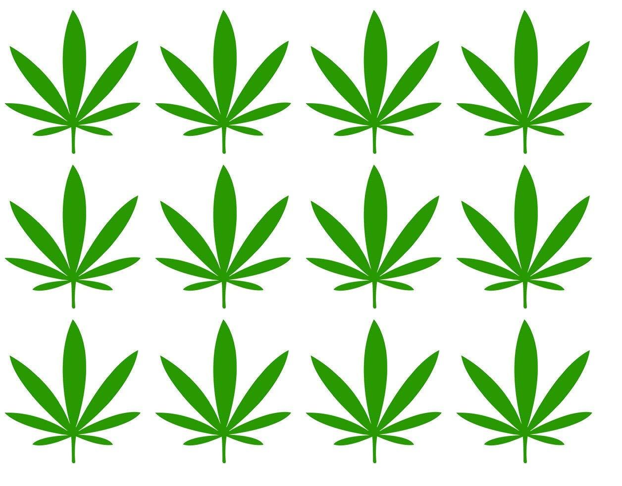 Произведение с коноплей курил марихуану 5 дней