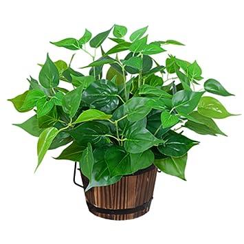 Zxx Wr Planta De Simulacion Plantas Verdes Interior Y Exterior - Plantas-verdes-exterior