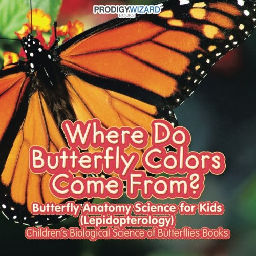 Where Do Butterfly Colors Come From? - Butterfly Anatomy Science for ...