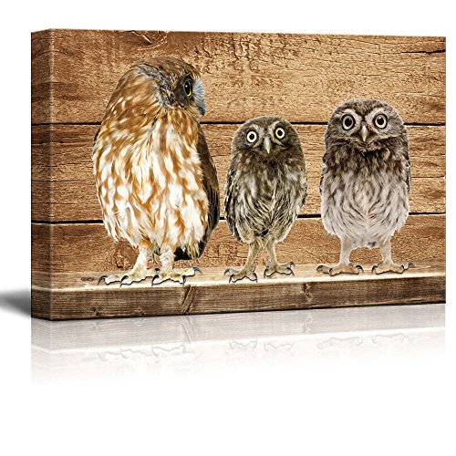 Rustic Three Owls Wall Decor ation