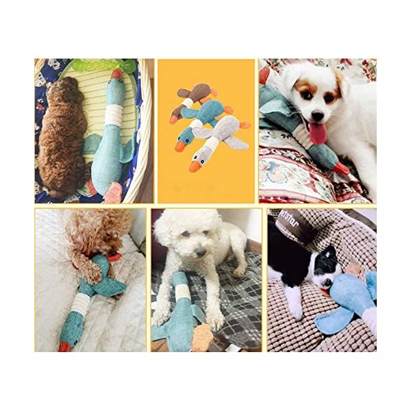 Queta Training Puzzle Toys Sounding Toys Burrito Dogs Resistance To Bite Teeth Cleaning Pet Toys 5