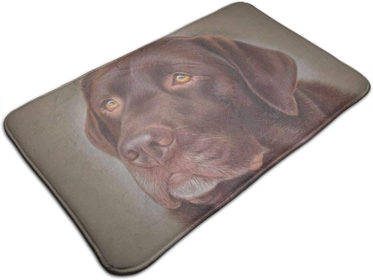 Labrador Dog Lab Charm Chocolate Personality Pattern Living Room Bedroom Carpet Door Mat Flannel Fabric Realistic Printing Non Slip Mat Home Decoration Bathroom Accessories