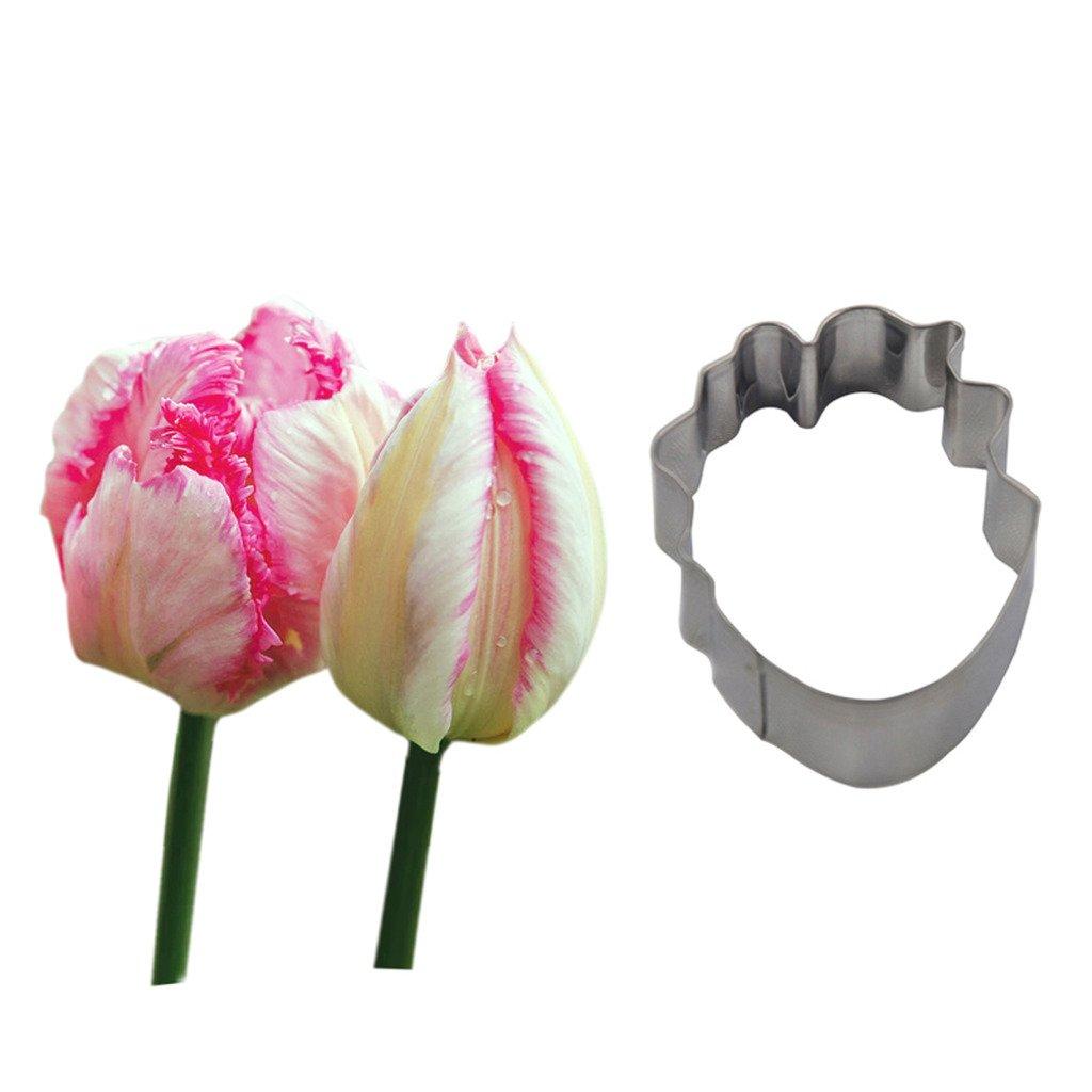 Amazon Four C Fondant Molds Parrot Tulip Gum Paste Cutters