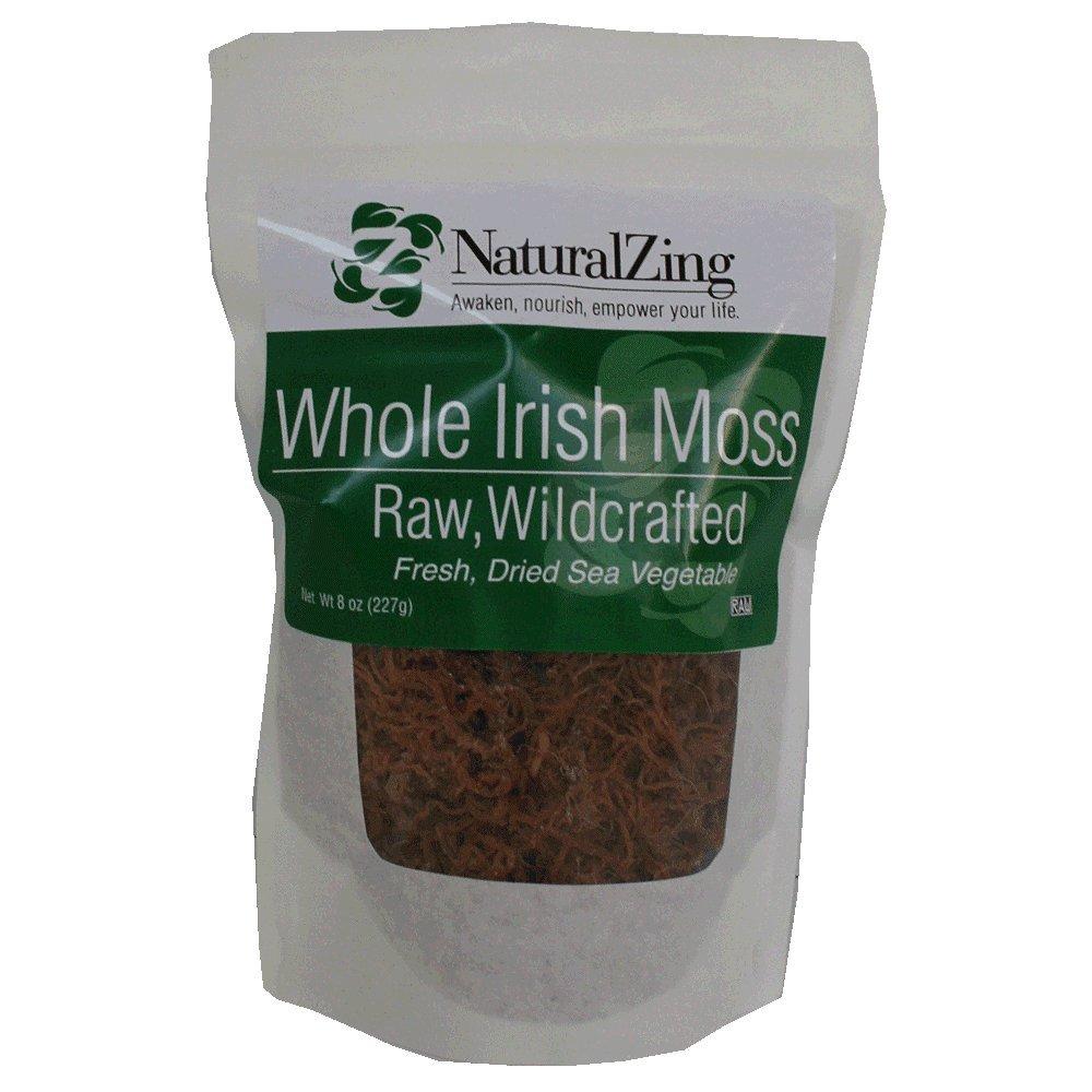 Irish Moss, Fresh (Raw, Wildcrafted) 8 oz