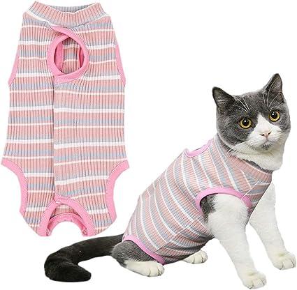 wpaacb Camisetas para Perros Traje De Recuperación para Gatos ...