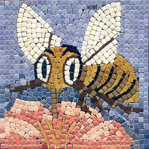 Apple DIY Mosaic Art Kit 5.9 Square 15x15cm
