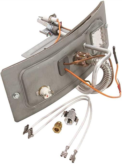 Premier Plus Natural Gas Water Heater Burner Assembly BFG 40T40 or ...
