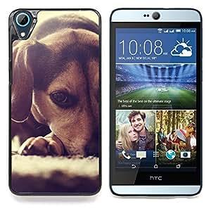 """Perrito del beagle Pequeño Perro raposero"""" - Metal de aluminio y de plástico duro Caja del teléfono - Negro - HTC Desire 626 626w 626d 626g 626G dual sim"""
