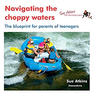 Navigating the Choppy Waters Audiobook