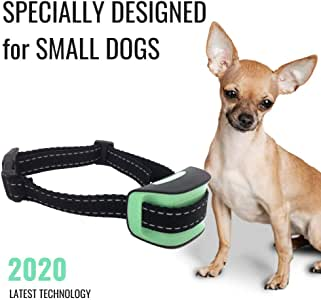 Specially Designed - Small Dog No Bark Collar - Anti Barking Vibration Control Device for Small Dogs - Puppy Training Deterrent - No Shock - 2020 Model - Fast Results! Mint