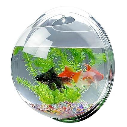 espejo de estilo de la cara de acrílico montado en la pared redonda de peces colgantes
