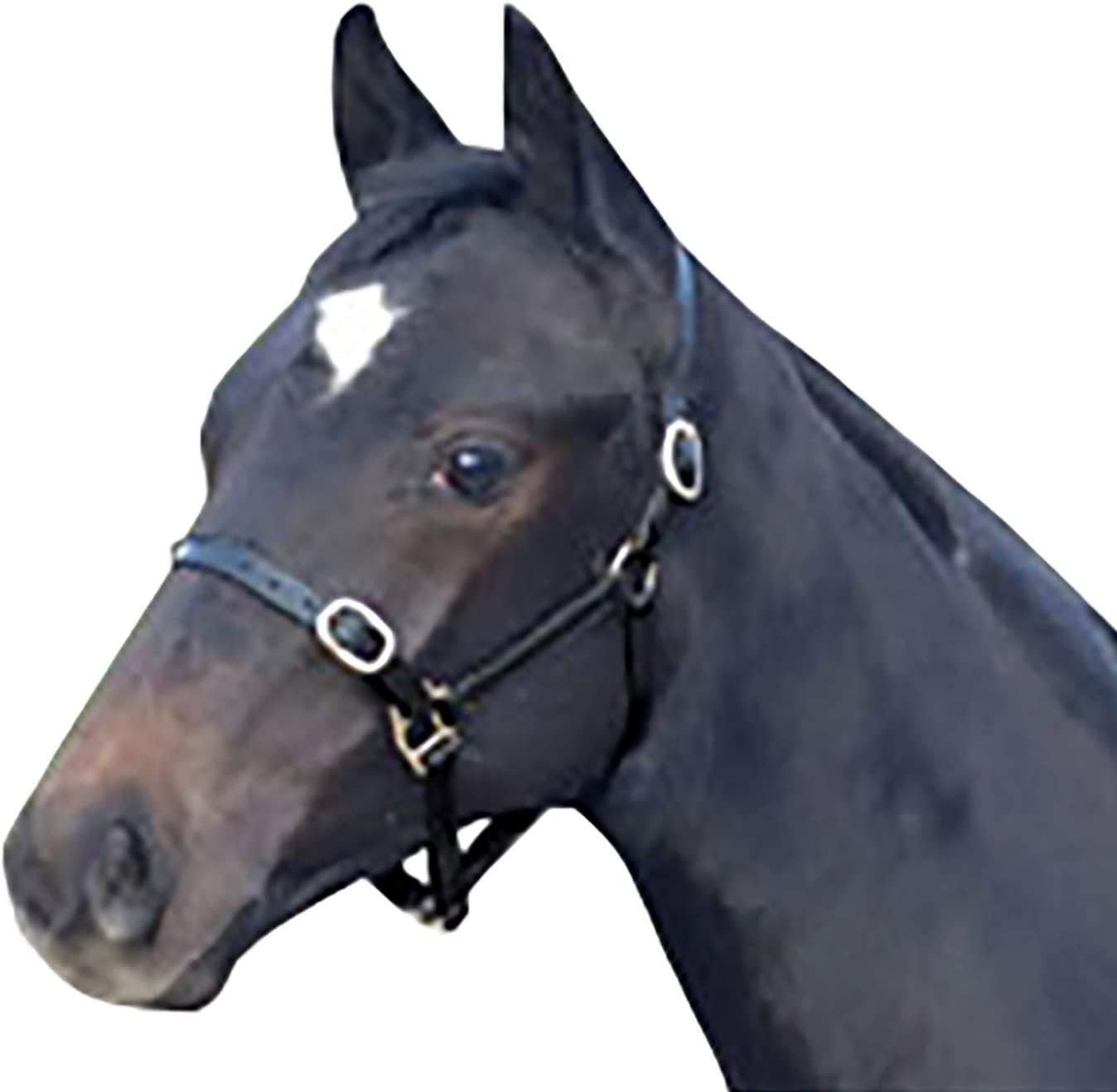 Cottage Craft Leather Foal Headcollar