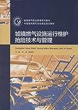 城镇燃气职业教育系列教材·中国城市燃气协会指定培训教材:城镇燃气设施运行维护抢险技术与管理