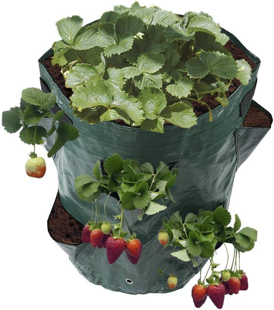 K9CK Bolsas para Plantas, Bolsa de Plantación, Bolsa de ...
