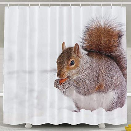 JJUSTING Winter Squirrel Shower Curtain Waterproof Polyester Fabric Sets Decoration Decor 60x72 Inch