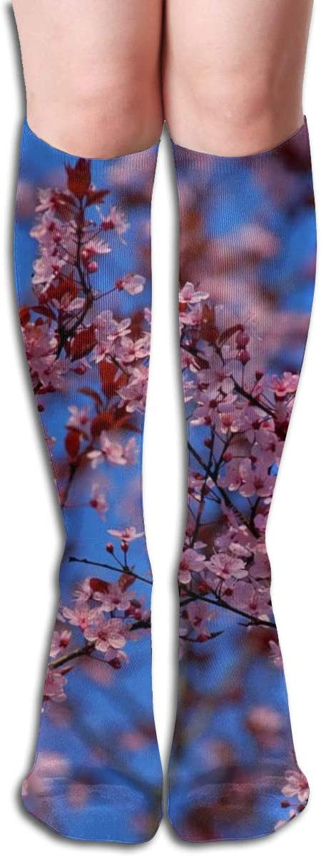 Apple Tree Flowers,Design Elastic Blend Long Socks Compression Knee High Socks (50cm) for Sports