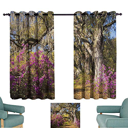 Mannwarehouse Americana Landscape Decor Printed Curtain Flowers in Charleston South Carolina Azalea Blooms Oak Tree for Living, Dining, Bedroom (Pair) 55