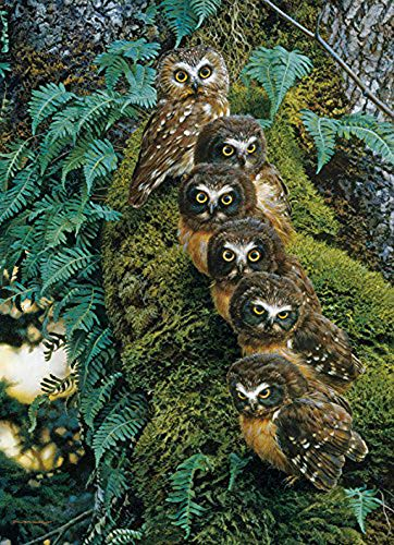 DIY Handwork Store 5D DIY Full Square Diamond Painting Kits Animals Owls Cross Stitch Kits The Family Tree Embroidery Paint with Diamonds Sewing Kits Supplies Home Wall Art Stickers(15.75