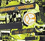 Last Leaf (Live)
