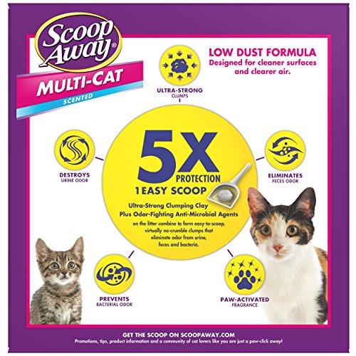 Scoop-Away-Multi-Cat-Scented-Cat-Litter-25-Pound-Carton