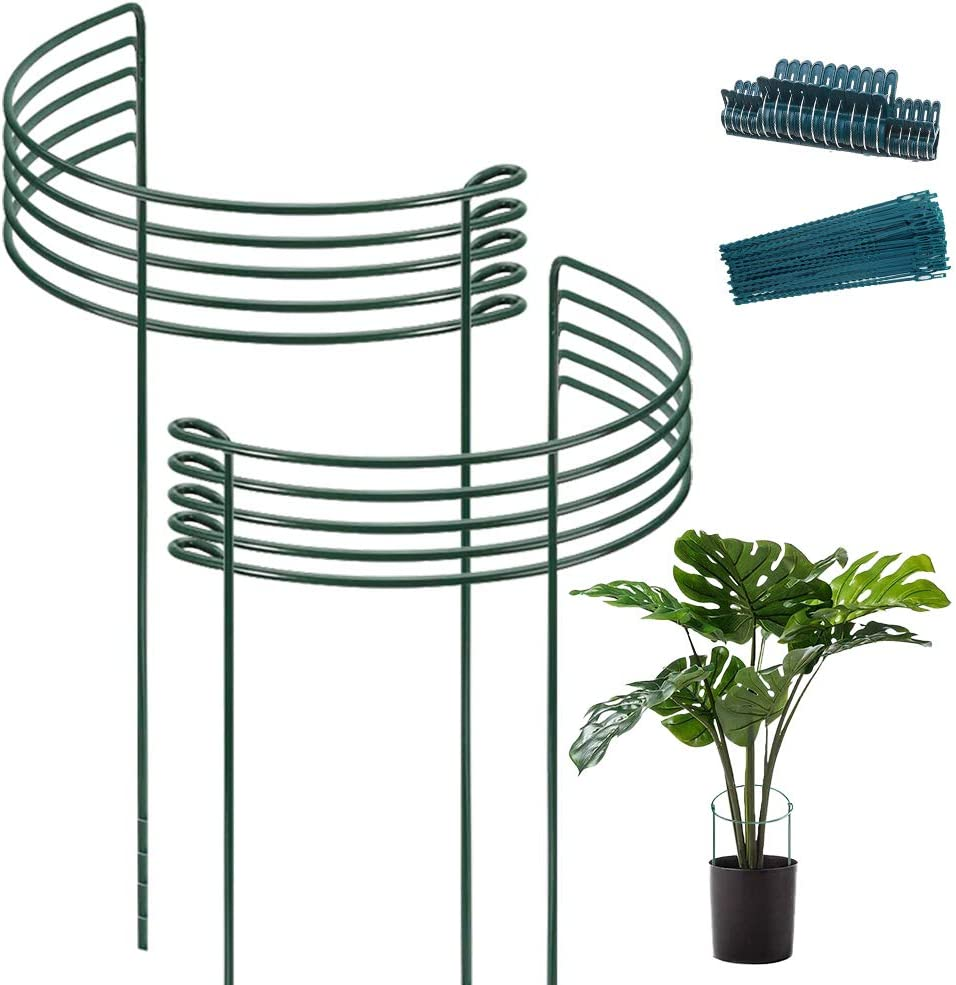 10pack Garden Plant Support Stake 10