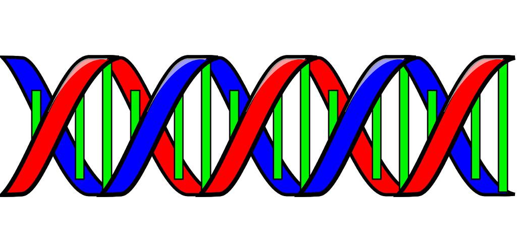 Genética molecular: Amazon.es: Appstore para Android