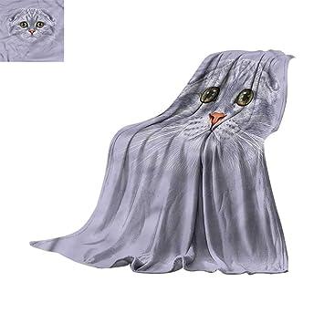 Amazon.com: scenine Soft Bed Blanket Cat,Kitties Doing Yoga ...