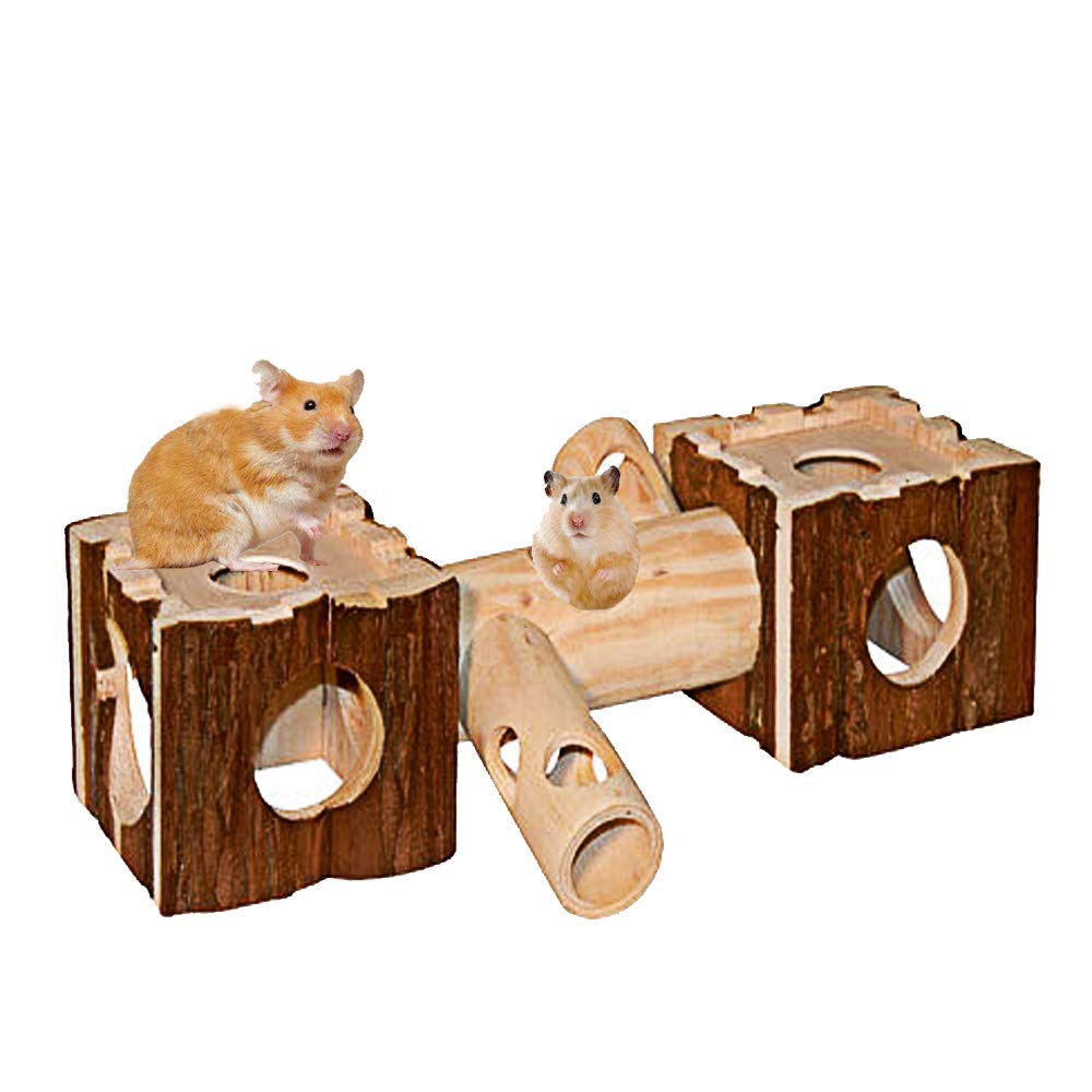 Hamiledyi Natural Living Tunnel System, Small Animal House