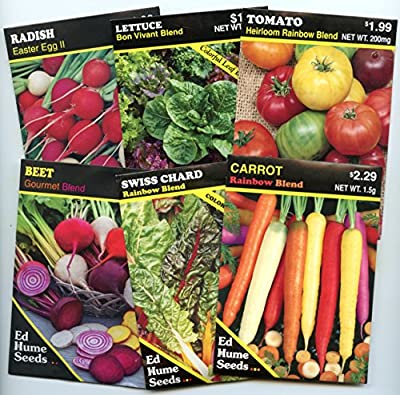 Rainbow Vegetable Garden Seed Collection