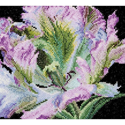 Thea Gouverneur 18 Count Tulip on Aida Counted Cross Stitch Kit, 6 x ()