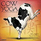 Cow Yoga 2016 Calendar