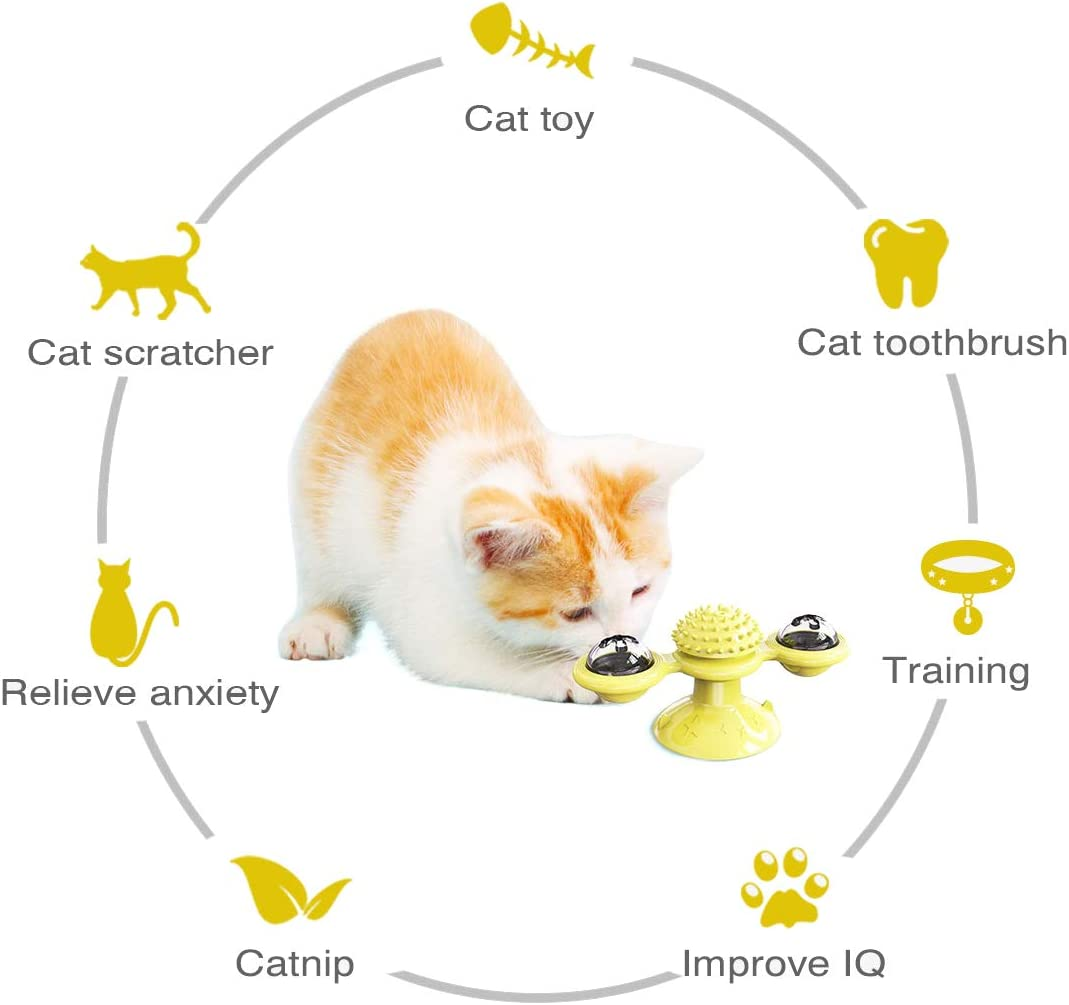 Funny Kitten Windmill Ball for Cats 2 Pack Puzzle Training Turntable Teasing Toys with Catnip Balls FML PET Interactive Cat Toy Massage Scratching Tickle Cat Turntable Teasing Cat Brush