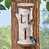 Collections Etc Faux Birch Butterfly House Tree