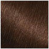 Garnier Nutrisse Nourishing Hair Color Creme, 413