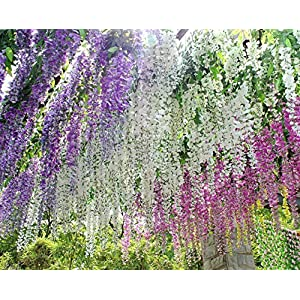 Coobl 3.6 Ft Realistic Romantic Classic Artificial Fake Wisteria Vine Ratta Silk Flowers for Garden Floral Decoration DIY Living Room Hanging Plant Vine Home Party Wedding Decor 12 Pcs (Pink) 4