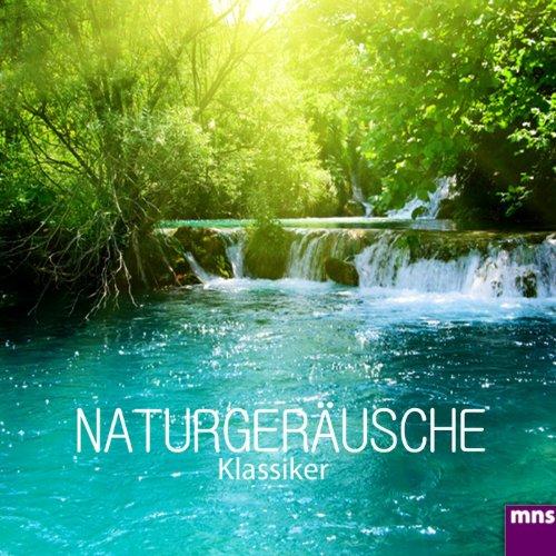naturgeräusche