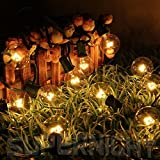 DeepLite 25ft Ambiance String Lights with G40 Globe Bulbs - Extendable Indoor & Outdoor Light Decoration for Garden - Patio - Umbrella - Party - Wedding - Halloween - Christmas