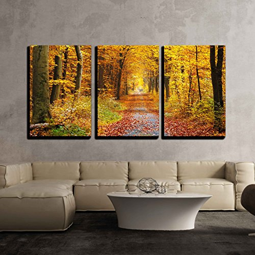 (wall26 - 3 Piece Canvas Wall Art - Road in The Autumn Forest - Modern Home Decor Stretched and Framed Ready to Hang - 16