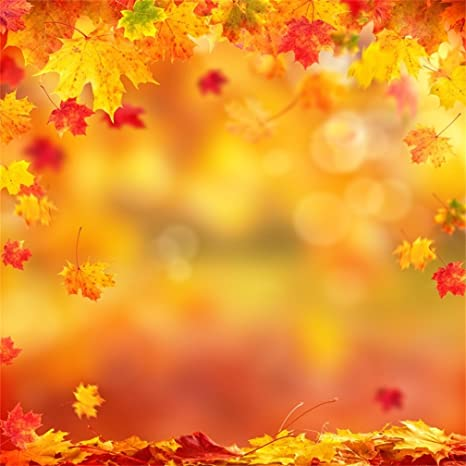 Amazon Com Csfoto 8x8ft Background For Maple Leaf Orange