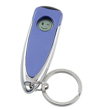 Azul Tono Plateado Estática Eliminación Descargador Antiestáticas Llavero