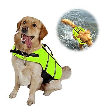 CXvwons Chaleco salvavidas para perro con cinturón ajustable: Amazon.es: Productos para mascotas