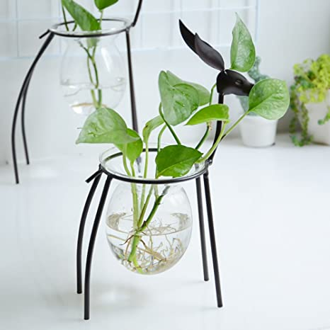 Amazon.com: Flower Stand, Hydroponics Geometry Crystal Ball Transparent Glass Vase Container Iron Deer Frame Desktop Pot No Soil Cultivation Plant Family ...