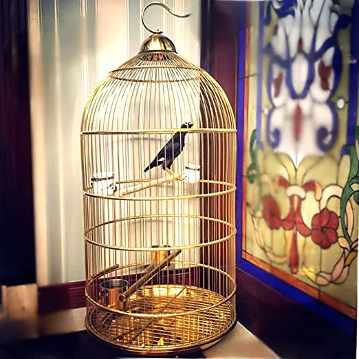 LSWUDU Jaula Redonda Grande Europea Starling Brothers In ...