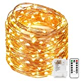 Kyпить Kohree 120 Micro LEDs Fairy String Lights Battery Powered 40ft Long Ultra Thin String Copper Wire Lights with Remote Control and Timer Perfect for Weddings,Party,Bedroom-2C Batteries powered на Amazon.com
