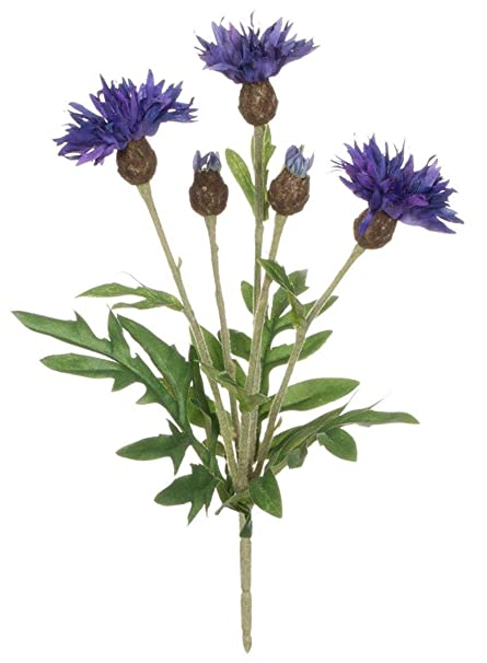 Amazon Sullivans Star Thistle Artificial Flowers In Blue Purple